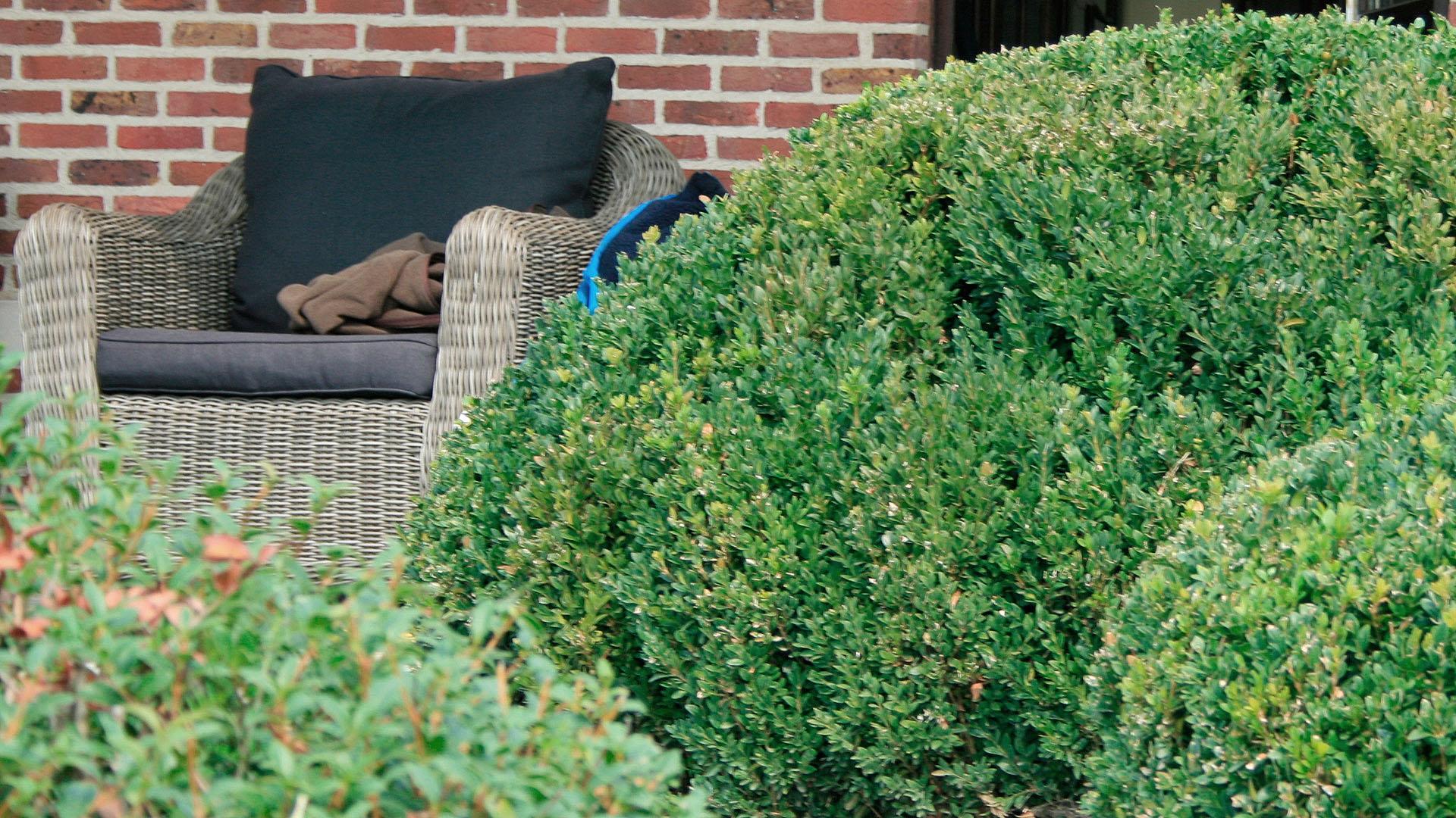 Tijd Voor Tuin : De winter is de tijd om in de tuin te werken chemindustade